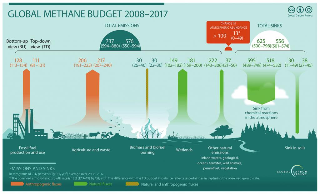 figure showing global methane budget